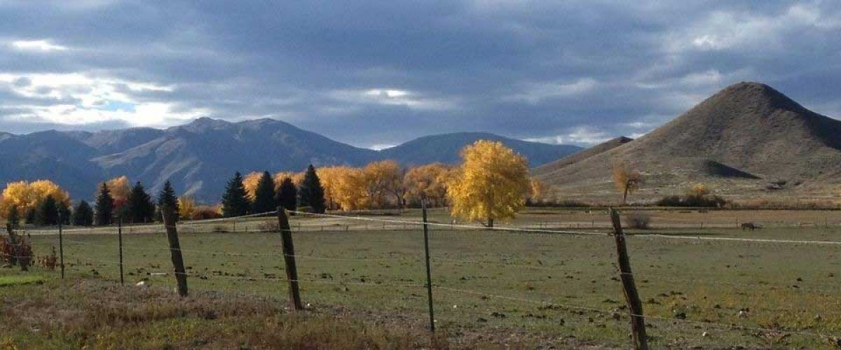 Rural Niwot and Haystack Mountain